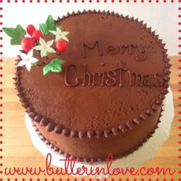 Chocolate Christmas Cake