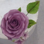 The classic rose.