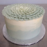 The demo cake with ombre